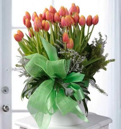 Arreglo Floral con 40 Tulipanes