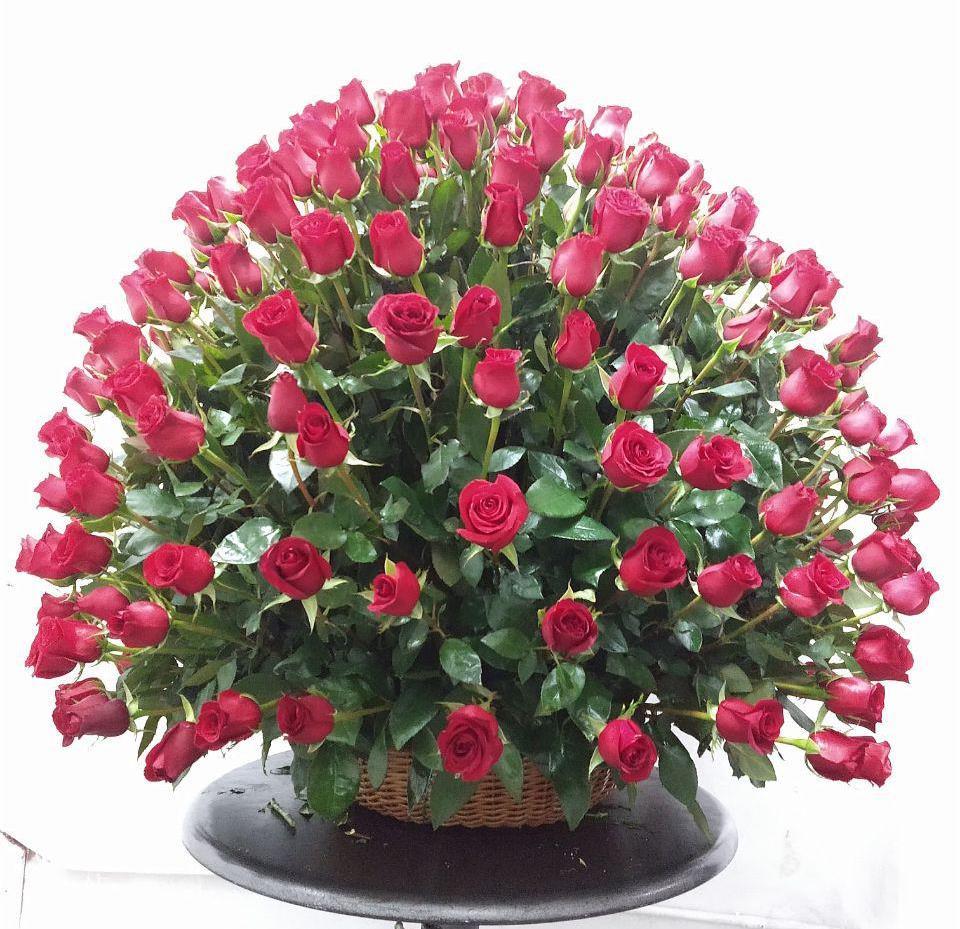 300 Rosas Rojas En Canasta De Mimbre